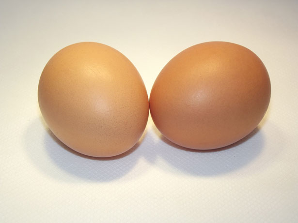 2-eggs-in-shell